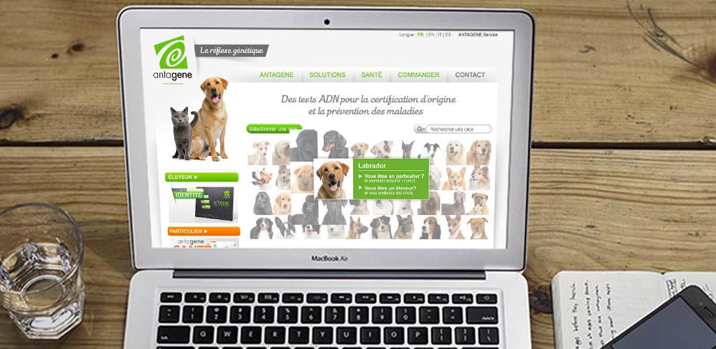 Antagene, site internet création Campagne